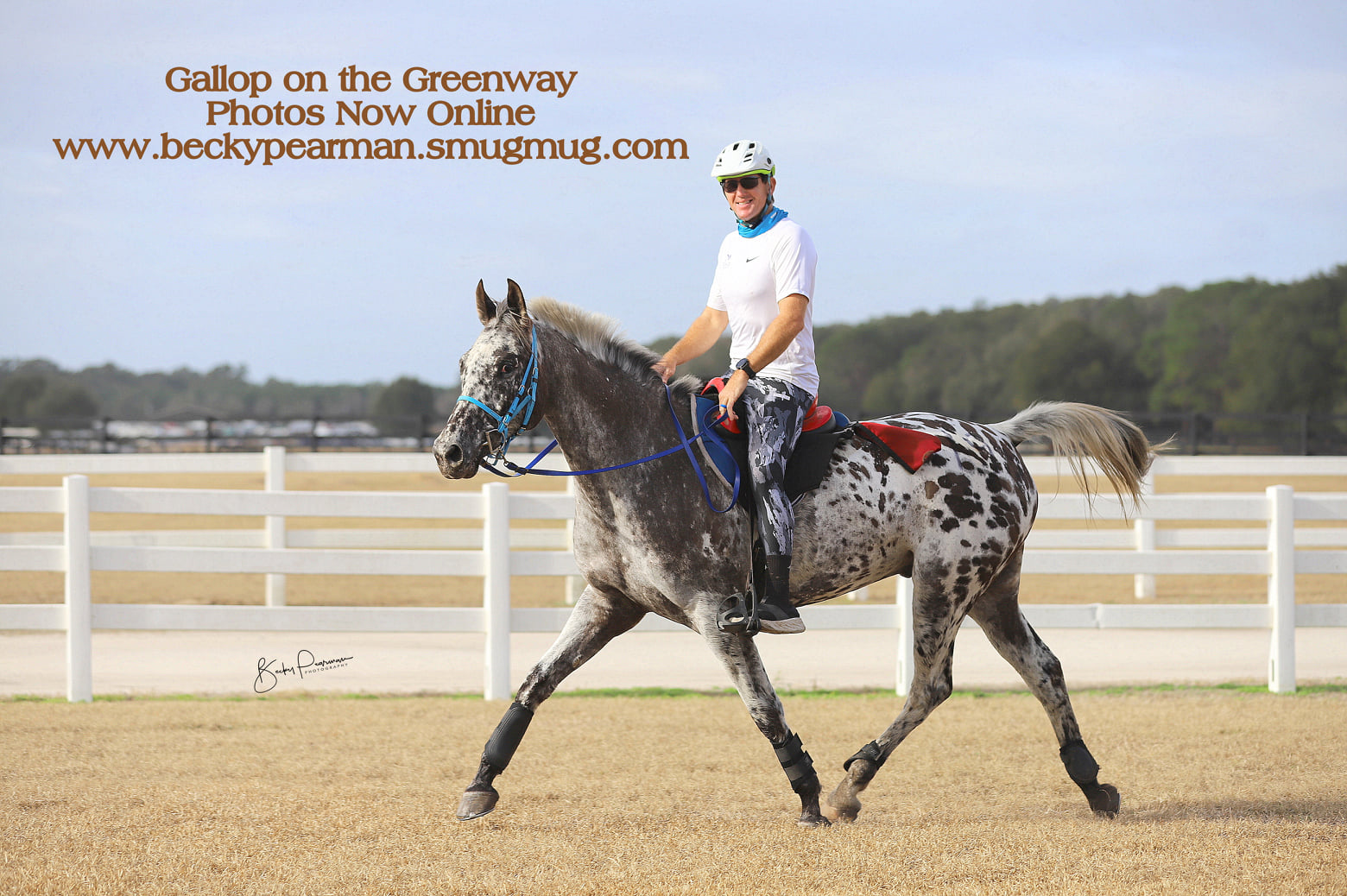 Gallop on the Greenway Pioneer IDR Multi Day10/25/50/75/100, Ocala, FL @ Florida Horse Park