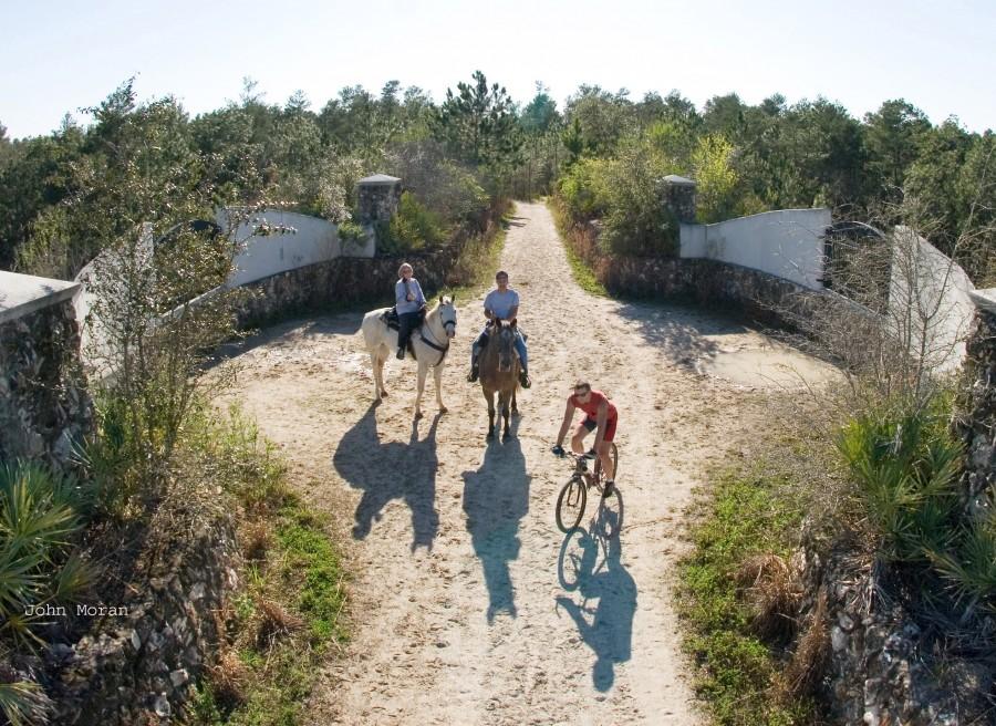 FHA Memorial IDR/25 CTR, Drive, Ride & Tie, Ocala, FL @ Seabrooke Farms